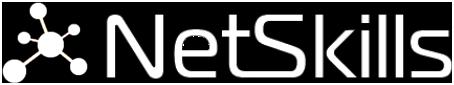 NetSkills Logotyp